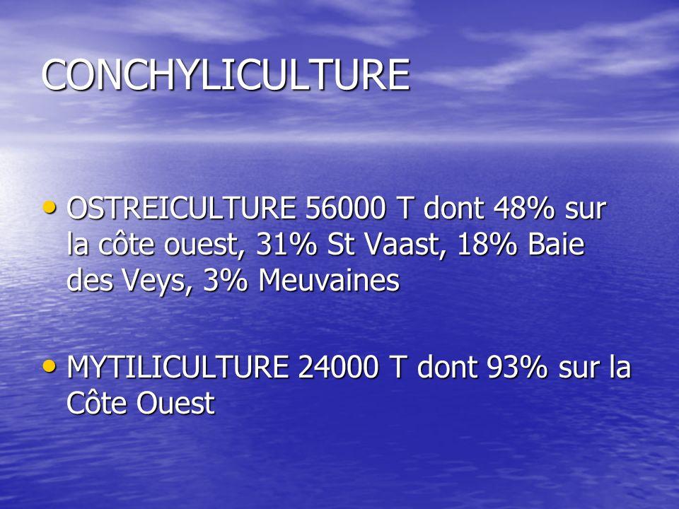 CONCHYLICULTUREOSTREICULTURE 56000 T dont 48% sur la côte ouest, 31% St Vaast, 18% Baie des Veys, 3% Meuvaines.