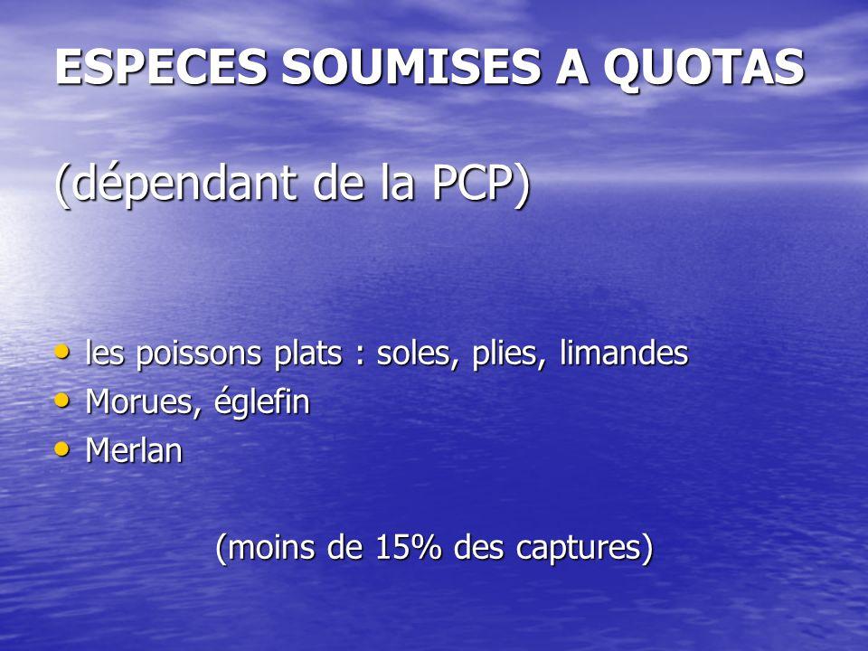 ESPECES SOUMISES A QUOTAS (dépendant de la PCP)