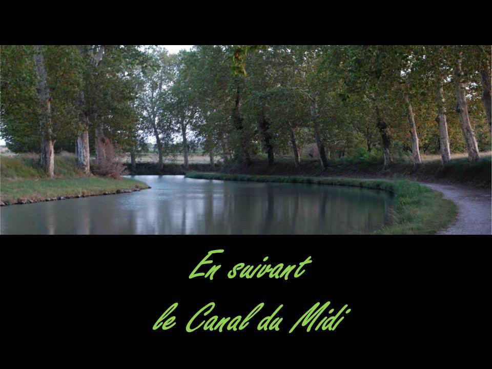 En suivant le Canal du Midi