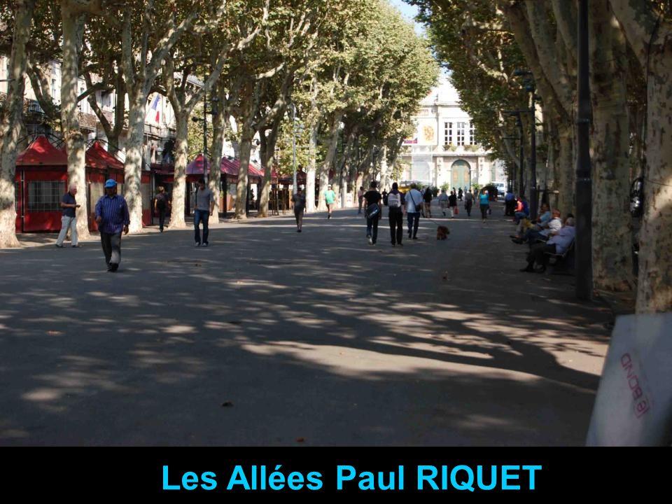 Les Allées Paul RIQUET