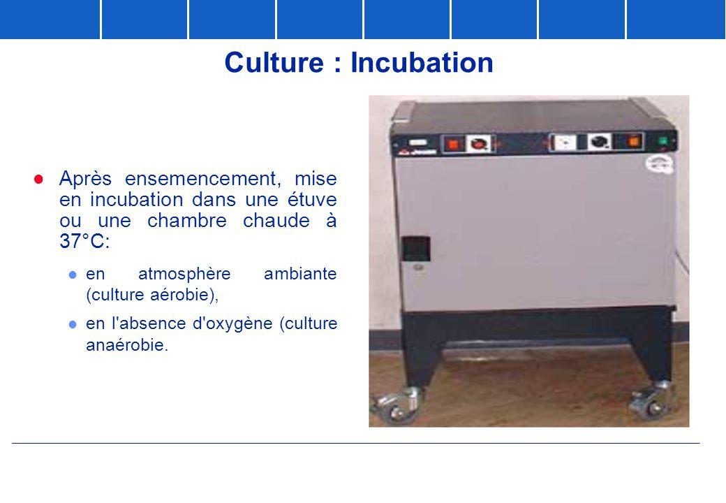 Culture : Incubation Après ensemencement, mise en incubation dans une étuve ou une chambre chaude à 37°C: