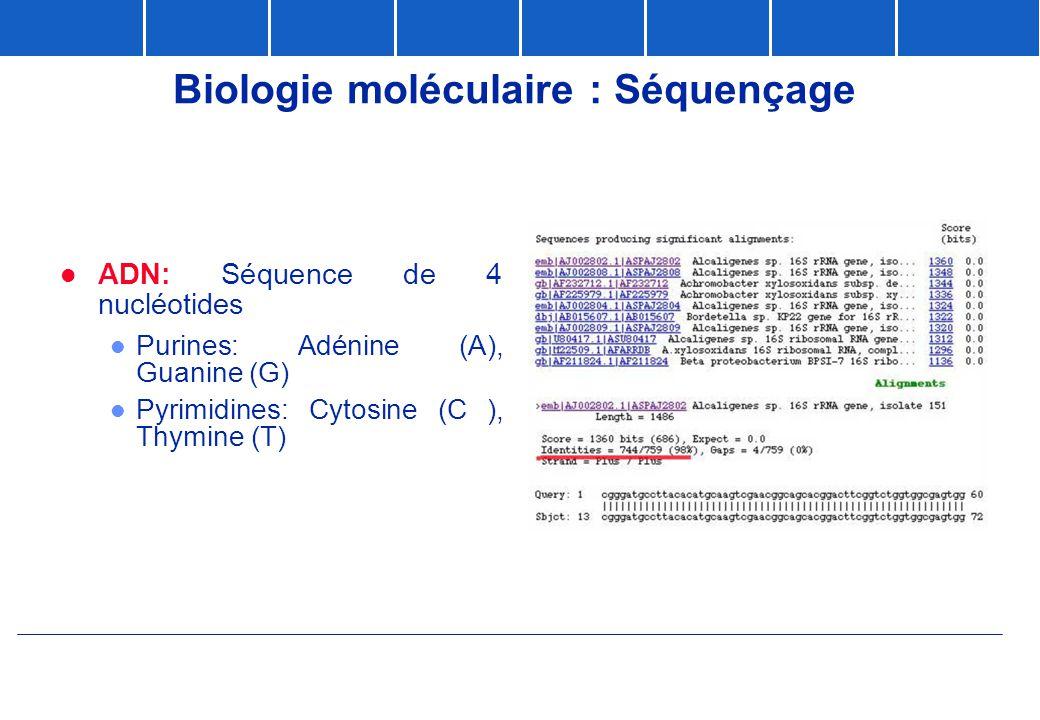 Biologie moléculaire : Séquençage