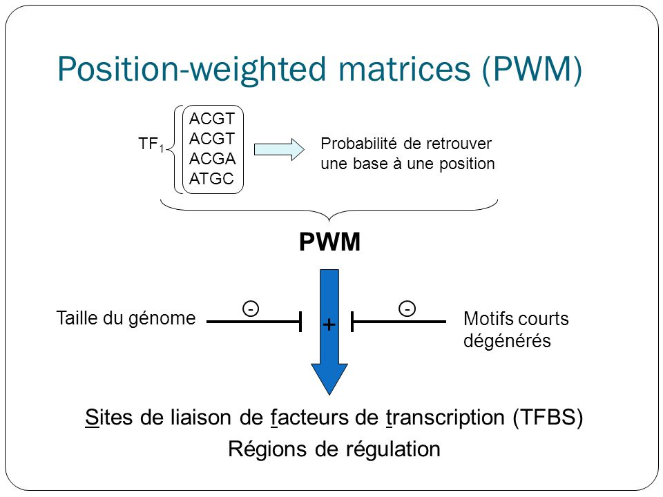Position-weighted matrices (PWM)
