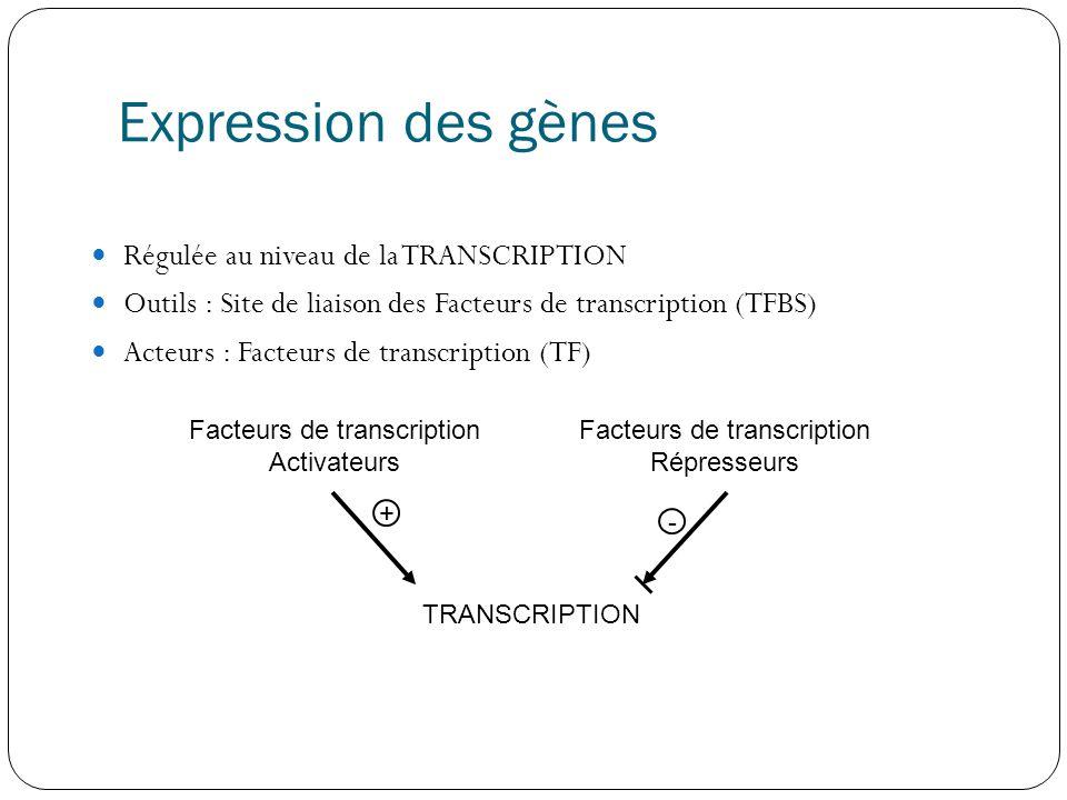 Expression des gènes Régulée au niveau de la TRANSCRIPTION