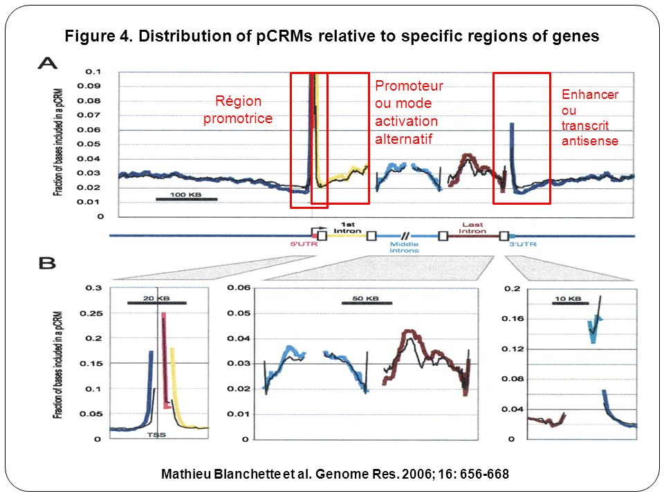 Figure 4. Distribution of pCRMs relative to specific regions of genes