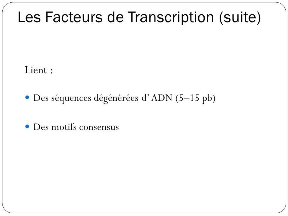 Les Facteurs de Transcription (suite)