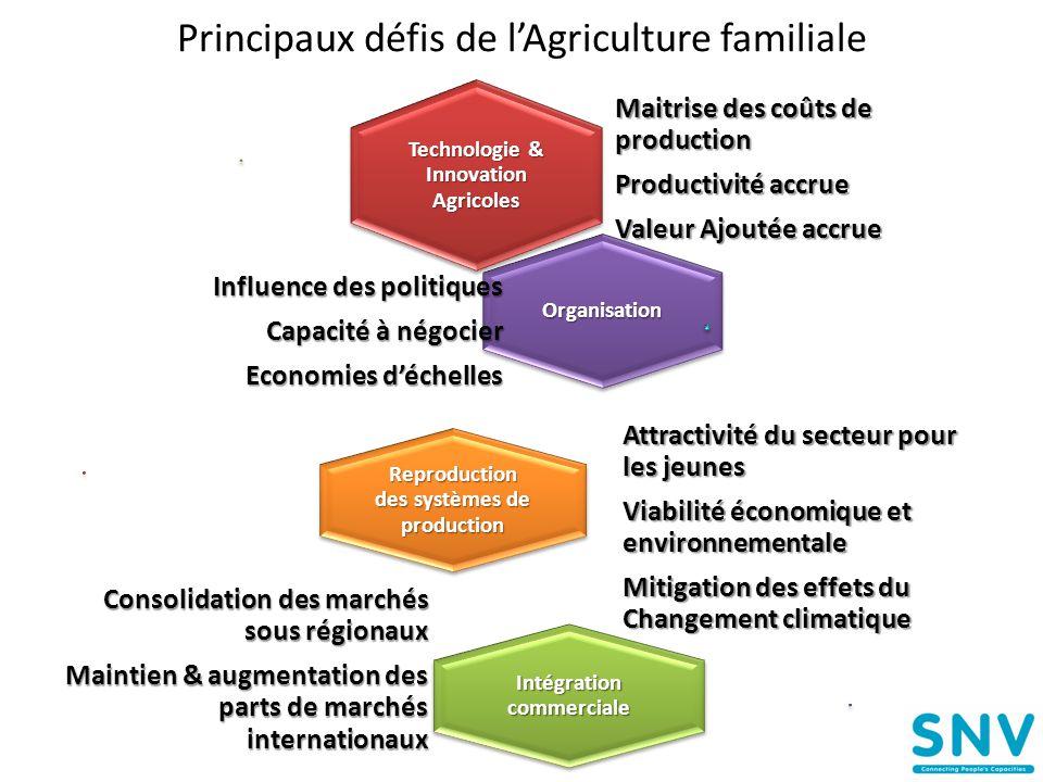 Principaux défis de l'Agriculture familiale