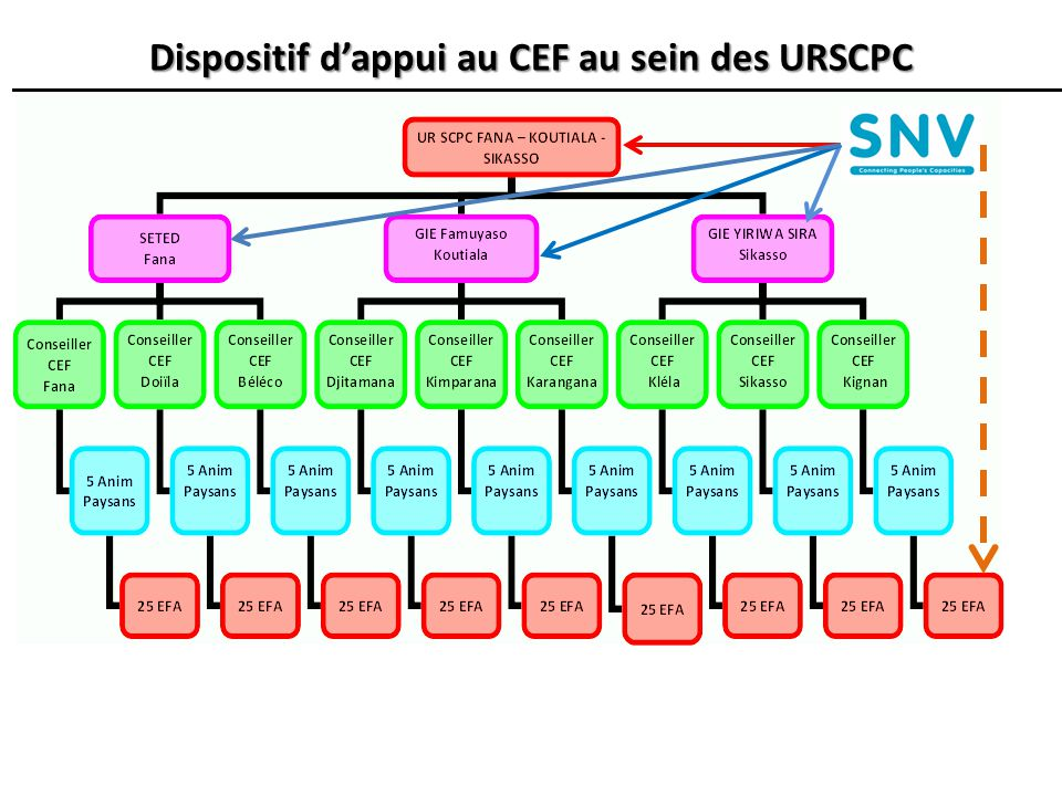 Dispositif d'appui au CEF au sein des URSCPC