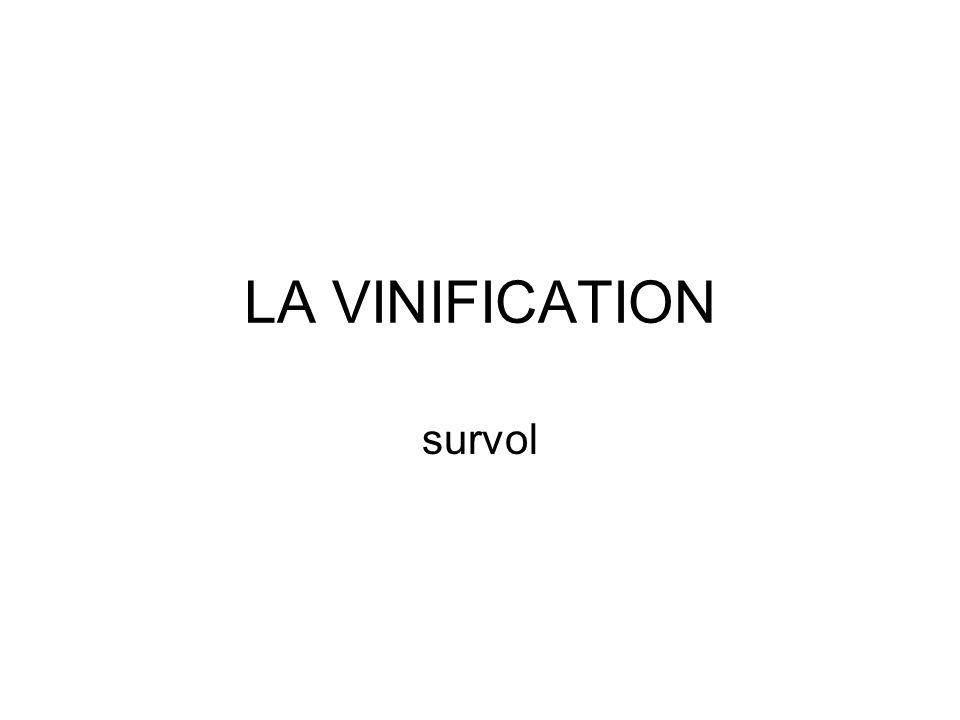 LA VINIFICATION survol