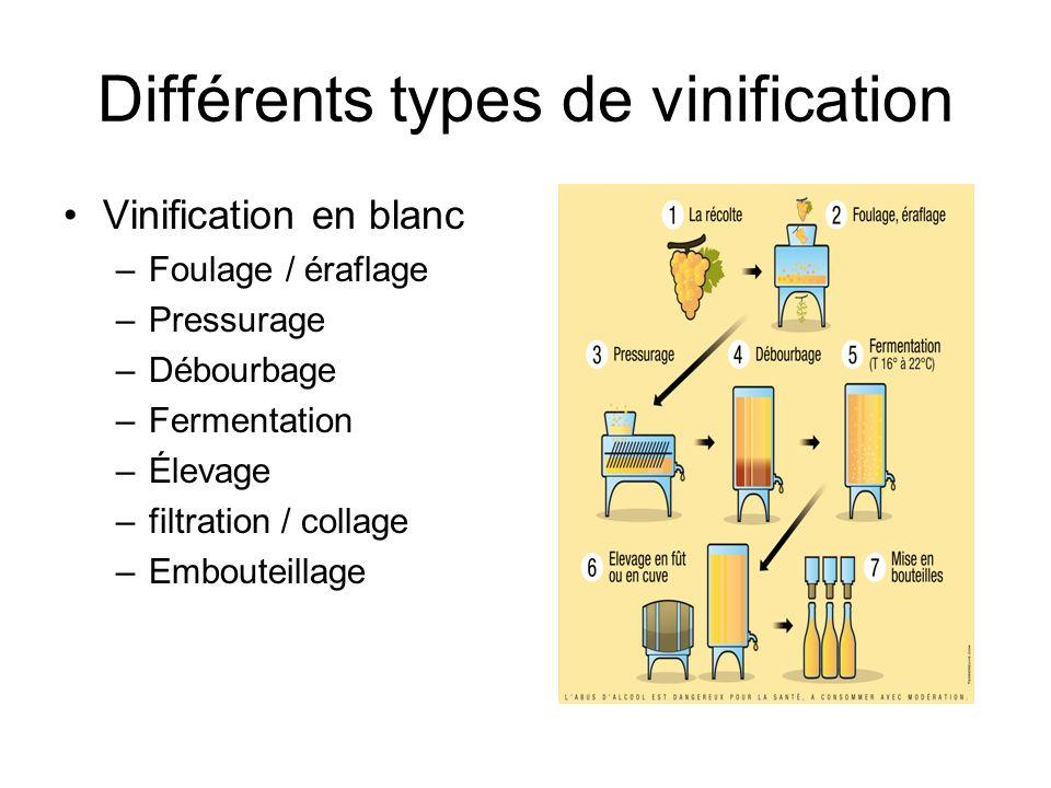 Différents types de vinification