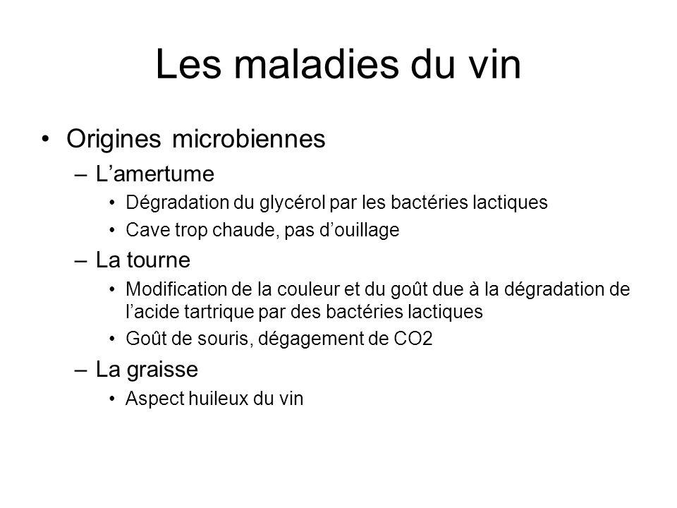 Les maladies du vin Origines microbiennes L'amertume La tourne