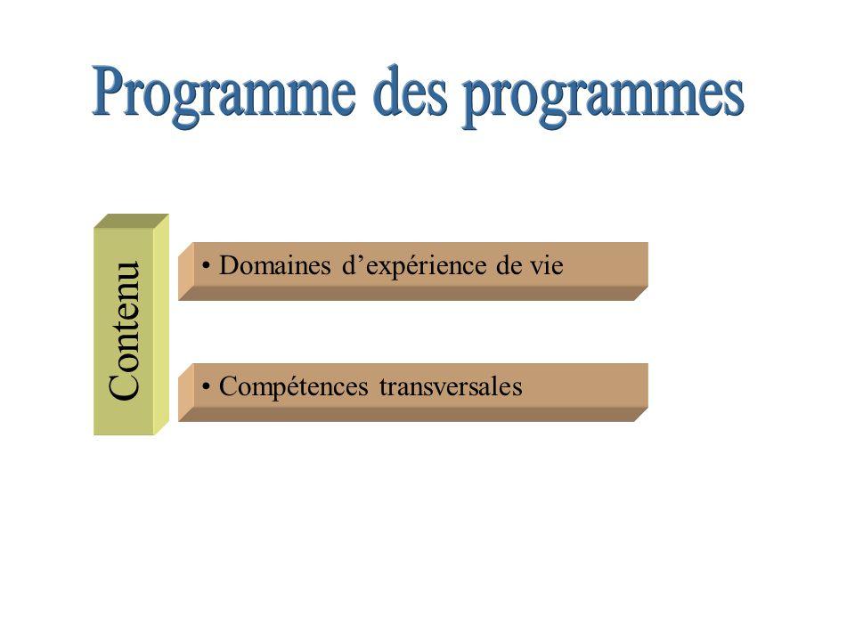 Programme des programmes