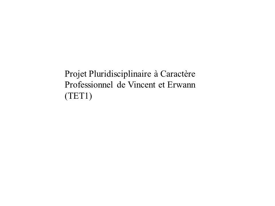 Projet Pluridisciplinaire à Caractère Professionnel de Vincent et Erwann (TET1)