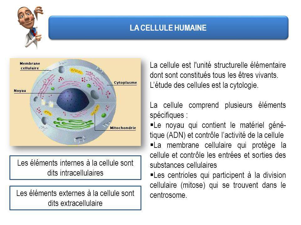 L'étude des cellules est la cytologie.