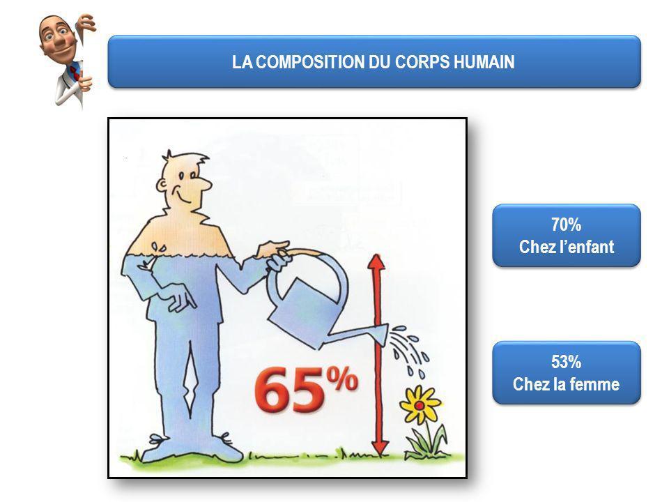 LA COMPOSITION DU CORPS HUMAIN