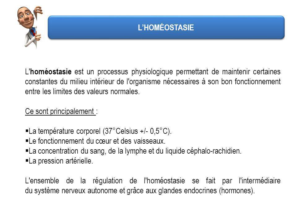 L'HOMÉOSTASIE