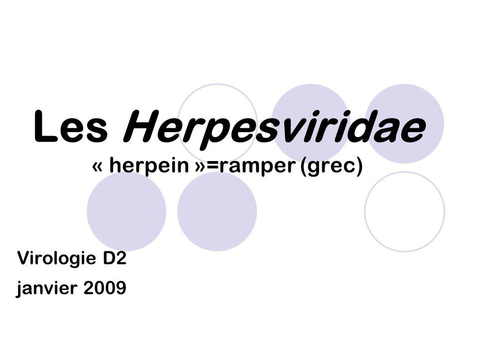 Les Herpesviridae « herpein »=ramper (grec)