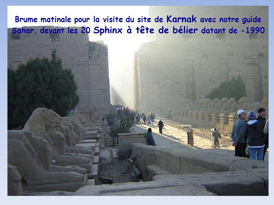 Brume matinale pour la visite du site de Karnak avec notre guide Sahar, devant les 20 Sphinx à tête de bélier datant de -1990