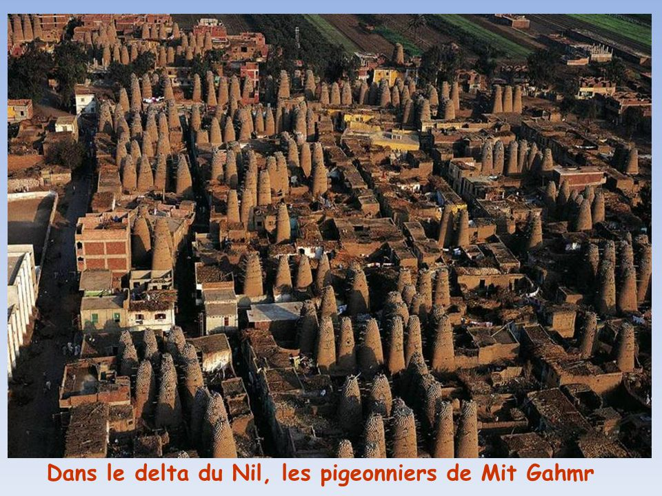 Dans le delta du Nil, les pigeonniers de Mit Gahmr