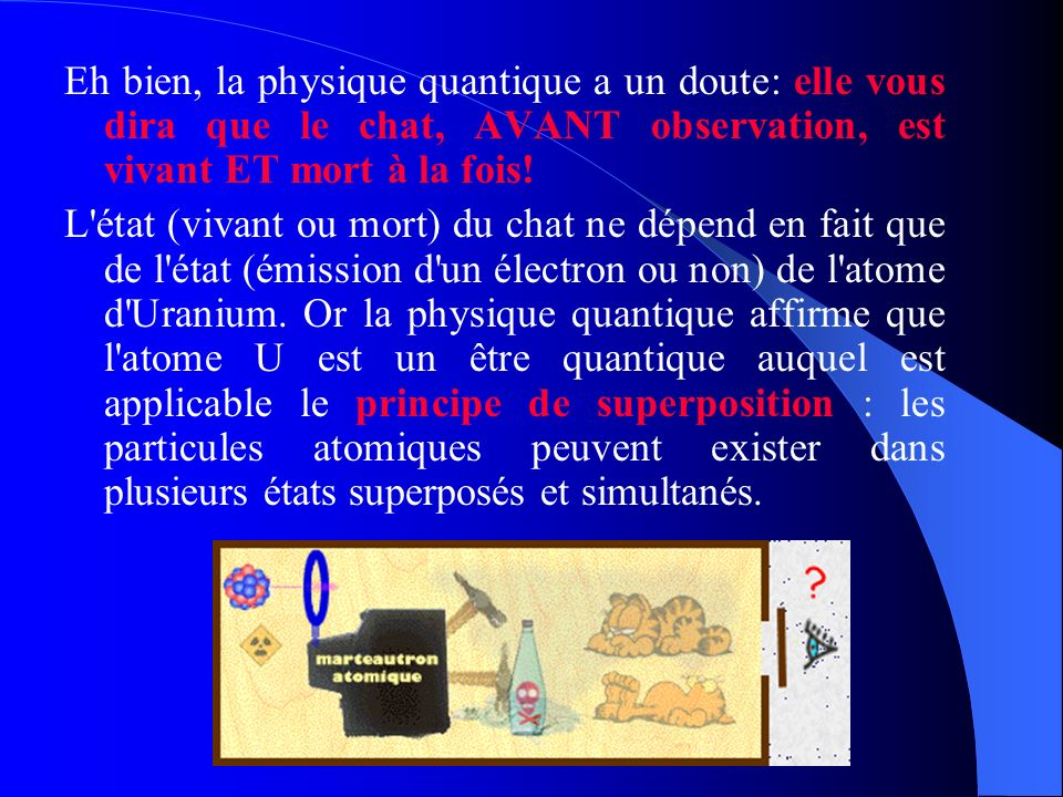 Eh bien, la physique quantique a un doute: elle vous dira que le chat, AVANT observation, est vivant ET mort à la fois!