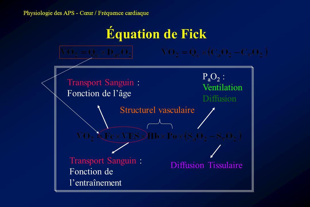 Équation de Fick PaO2 : Ventilation Diffusion