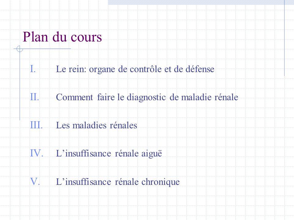 Plan du cours Le rein: organe de contrôle et de défense