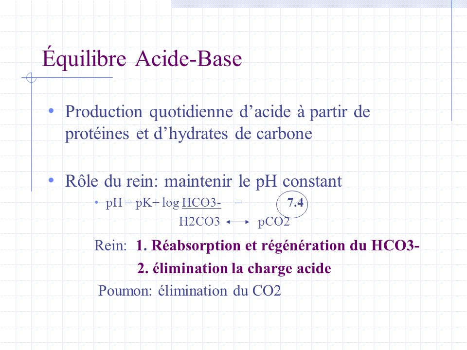 Équilibre Acide-Base Production quotidienne d'acide à partir de protéines et d'hydrates de carbone.