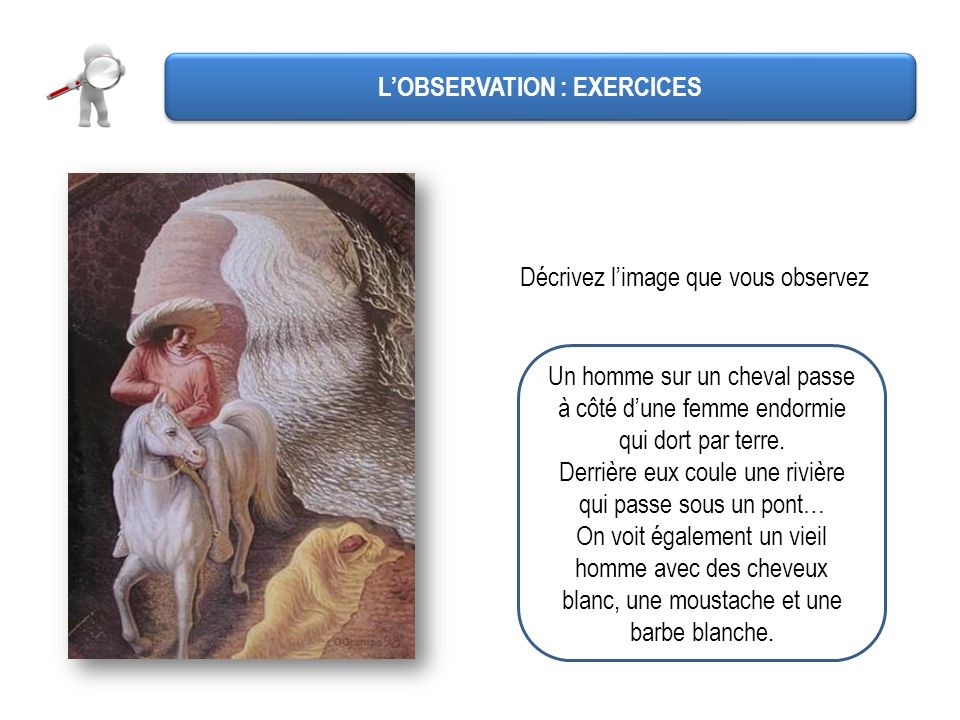 L'OBSERVATION : EXERCICES