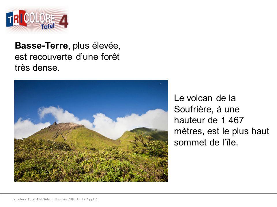 Basse-Terre, plus élevée, est recouverte d'une forêt très dense.