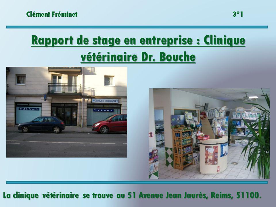 Rapport de stage en entreprise : Clinique vétérinaire Dr. Bouche