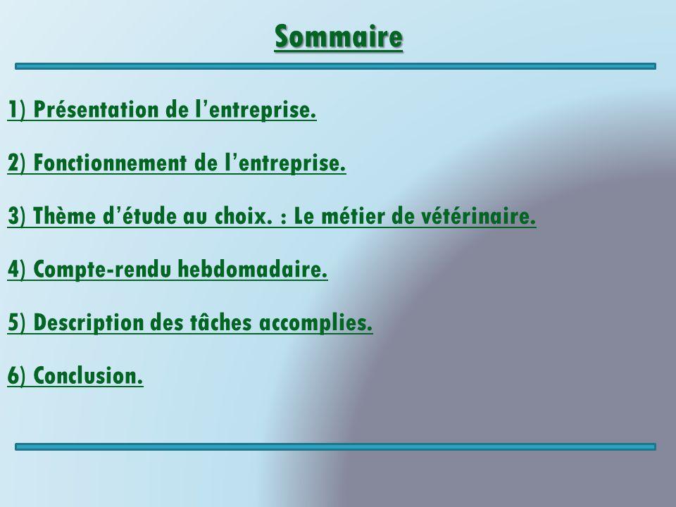 Sommaire 1) Présentation de l'entreprise.