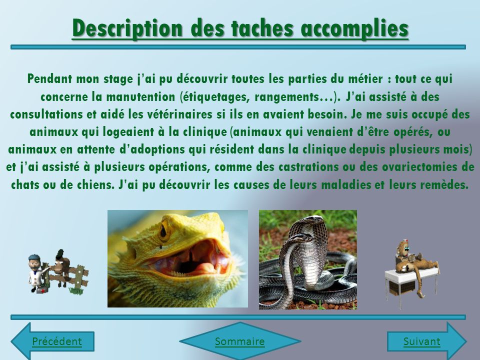 Description des taches accomplies