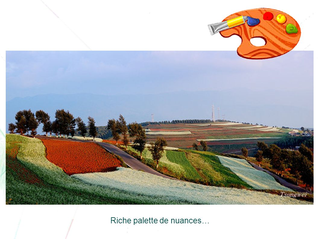 Riche palette de nuances…