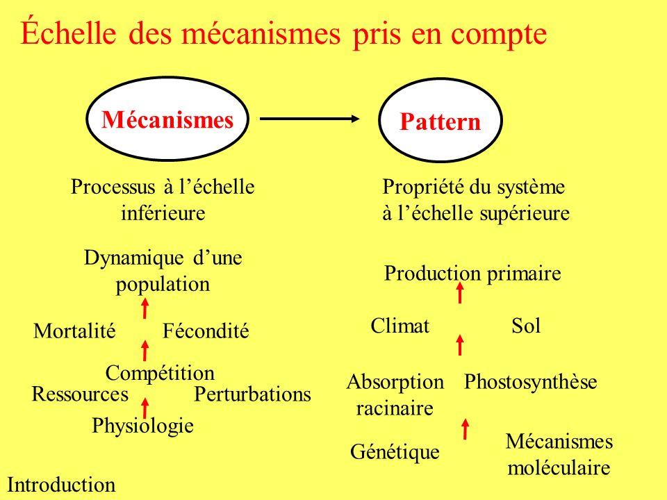 Échelle des mécanismes pris en compte