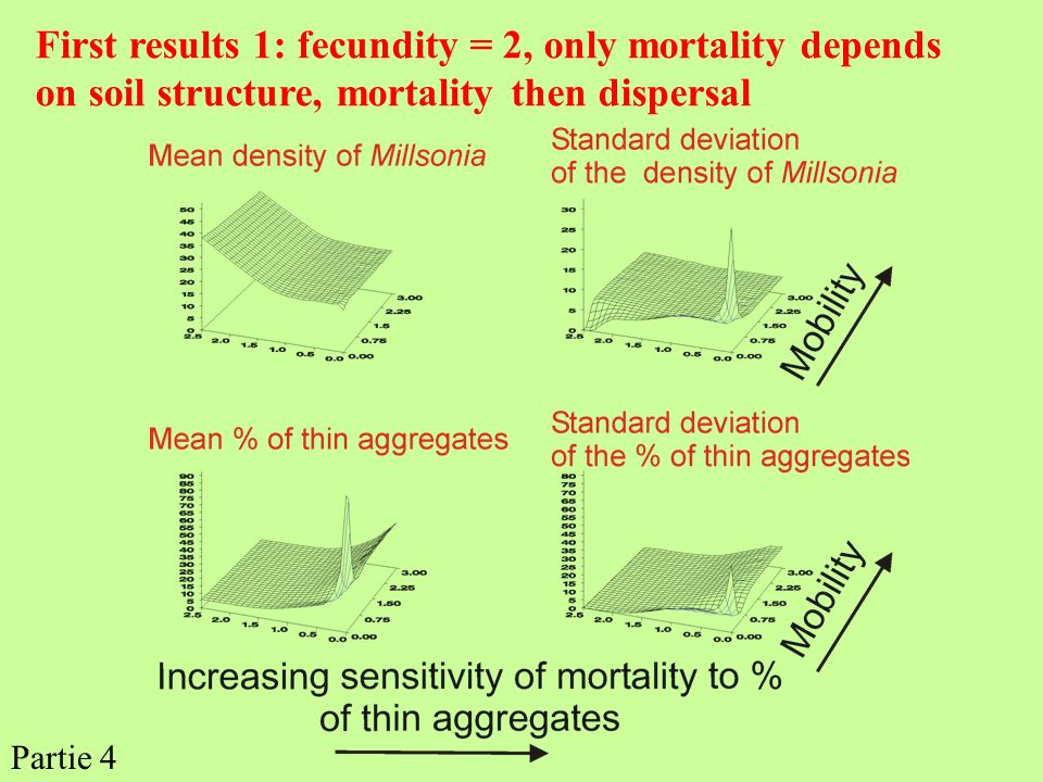 First results 1: fecundity = 2, only mortality depends on soil structure, mortality then dispersal