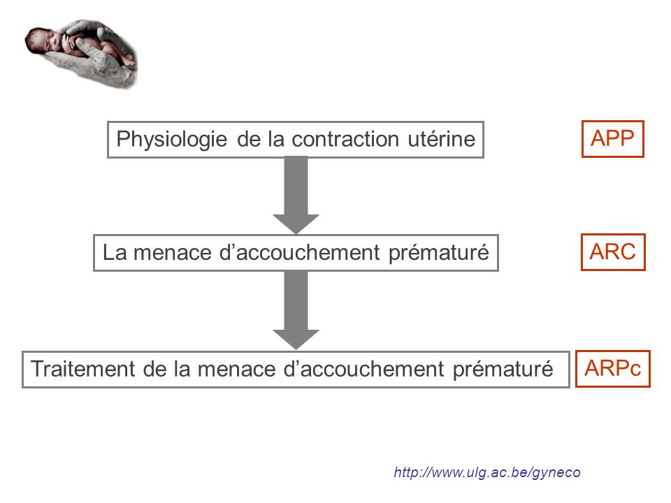 Physiologie de la contraction utérine APP