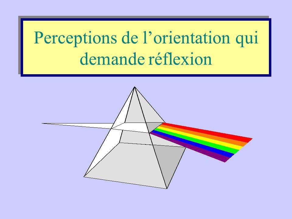 Perceptions de l'orientation qui demande réflexion