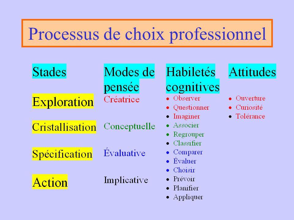 Processus de choix professionnel