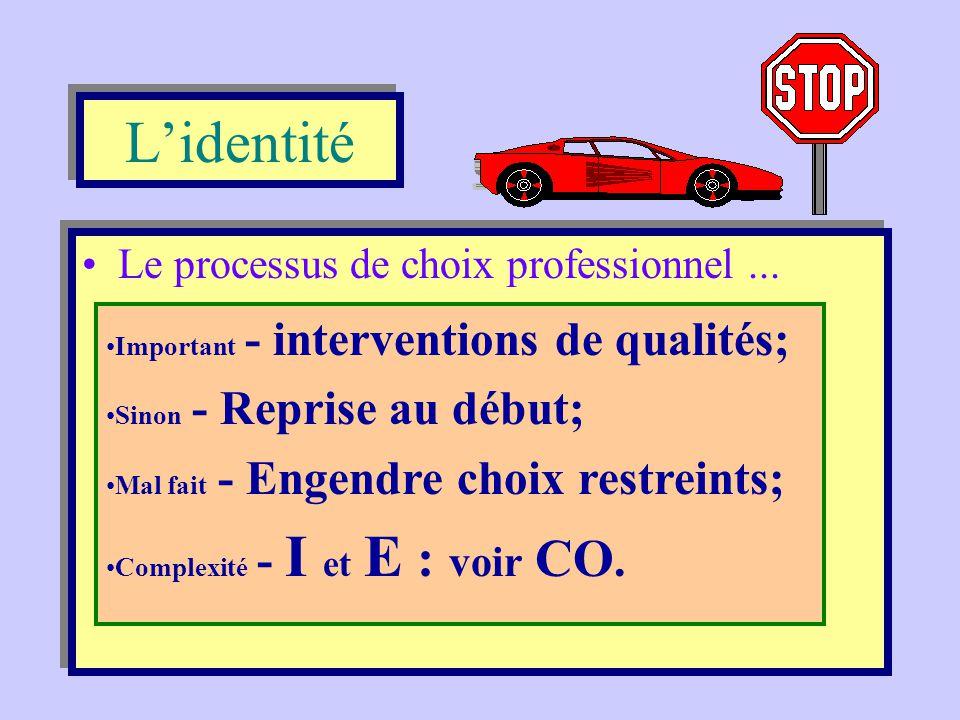 L'identité Le processus de choix professionnel ...