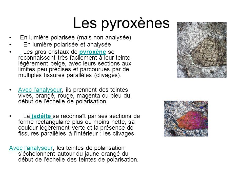 Les pyroxènes En lumière polarisée (mais non analysée)