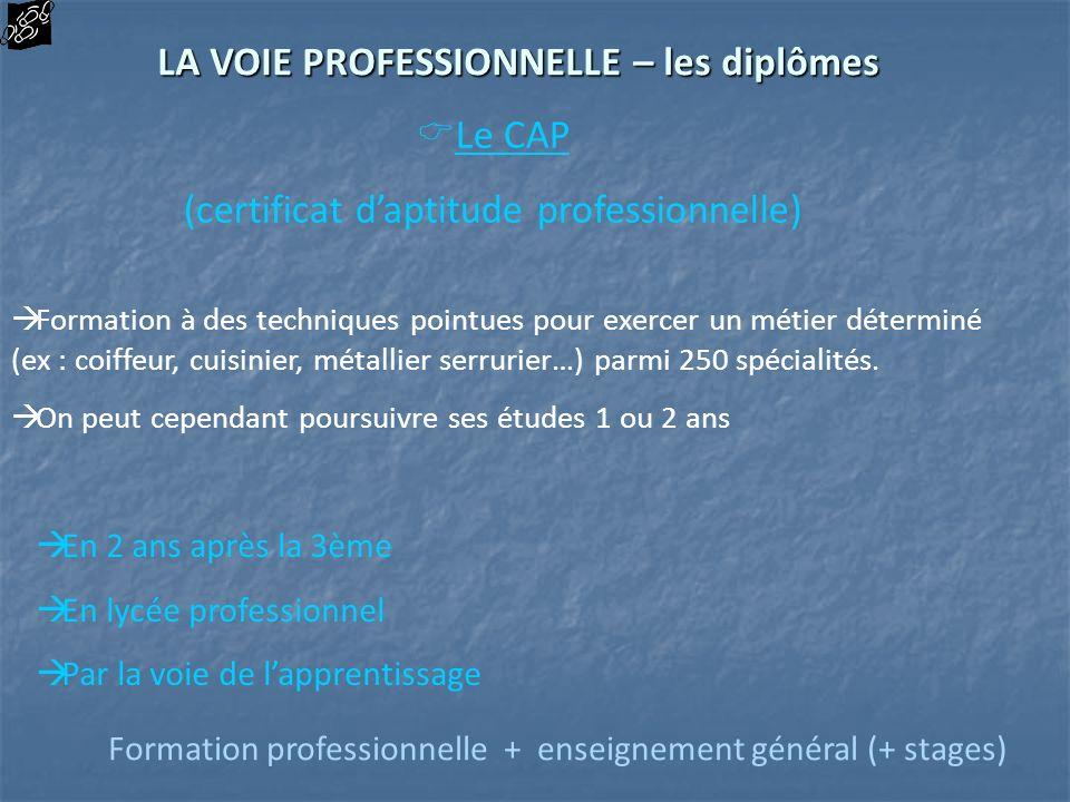 LA VOIE PROFESSIONNELLE – les diplômes