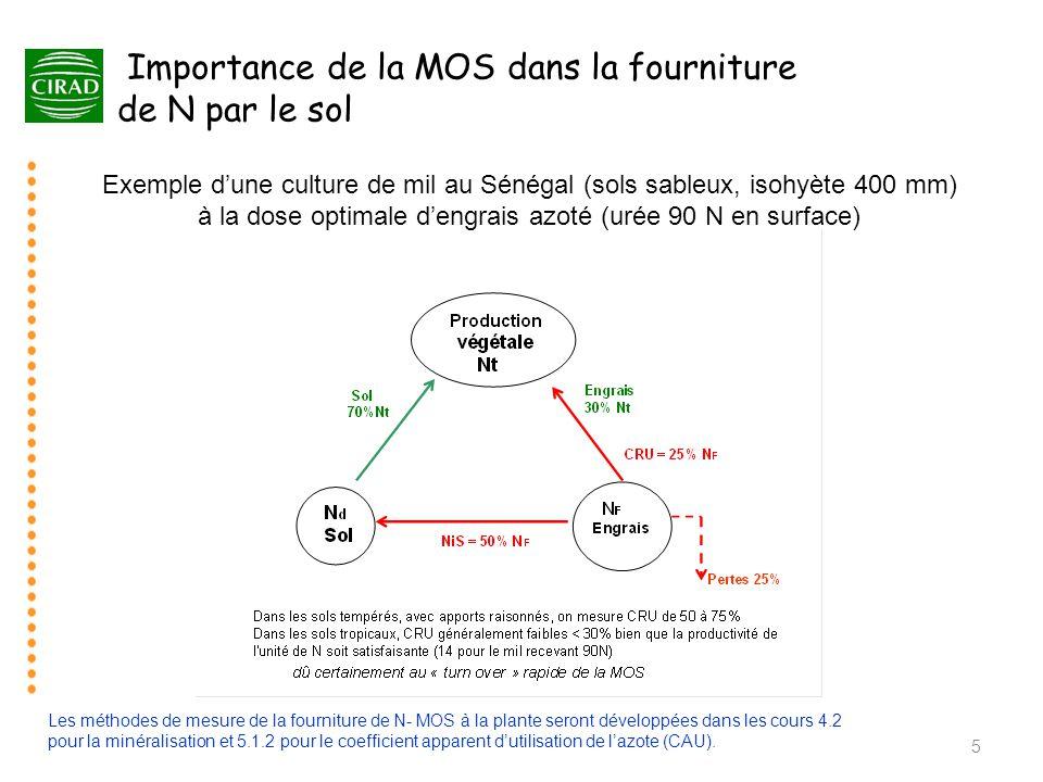 Importance de la MOS dans la fourniture de N par le sol