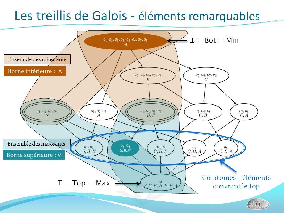 Les treillis de Galois - éléments remarquables