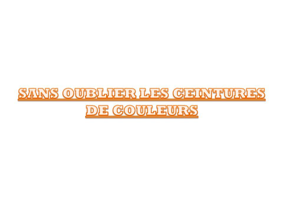 SANS OUBLIER LES CEINTURES DE COULEURS