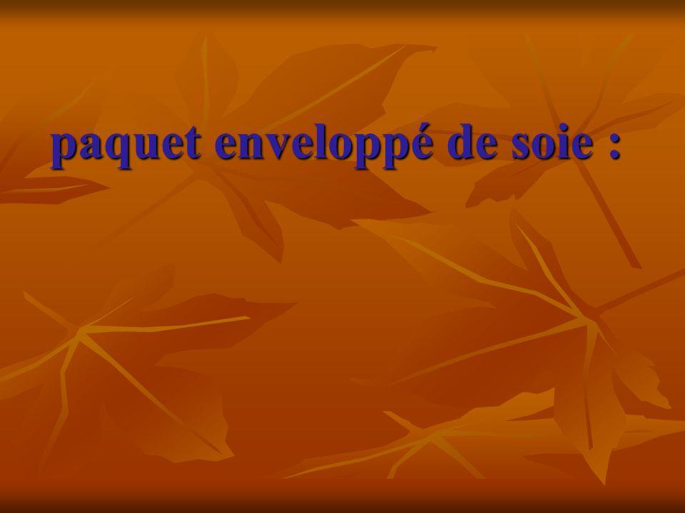 paquet enveloppé de soie :