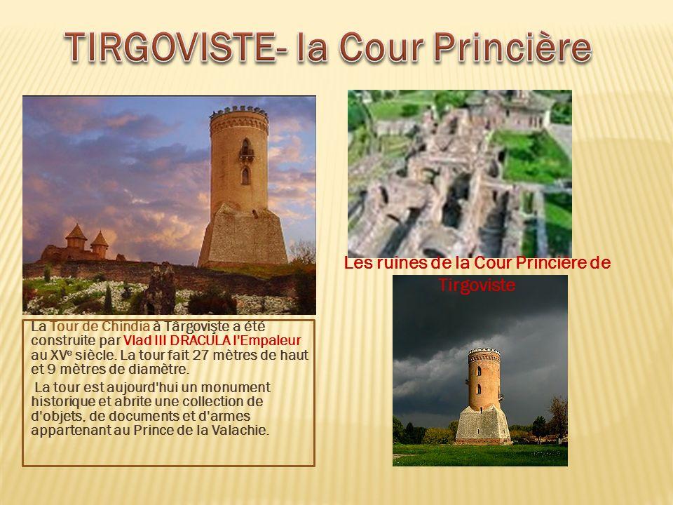 TIRGOVISTE- la Cour Princière