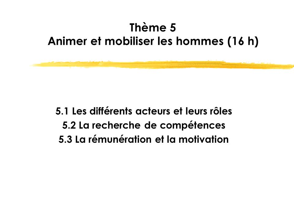 Thème 5 Animer et mobiliser les hommes (16 h)