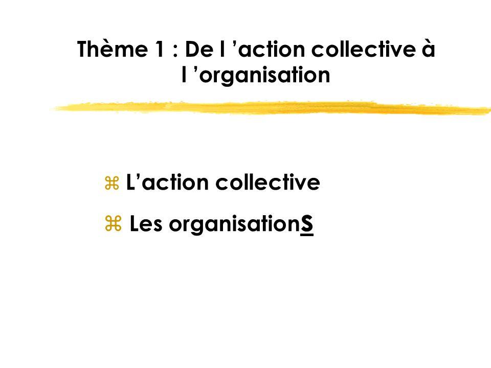 Thème 1 : De l 'action collective à l 'organisation