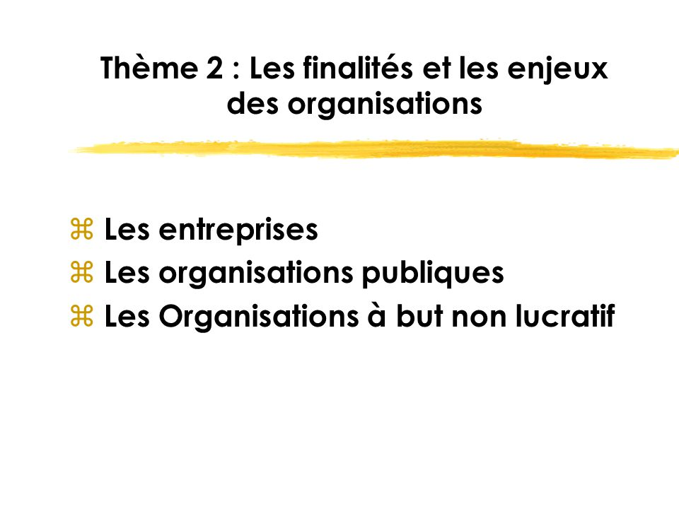Thème 2 : Les finalités et les enjeux des organisations
