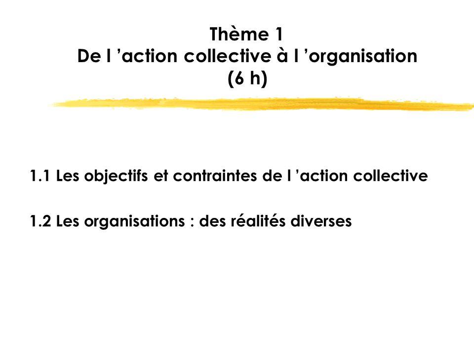 Thème 1 De l 'action collective à l 'organisation (6 h)